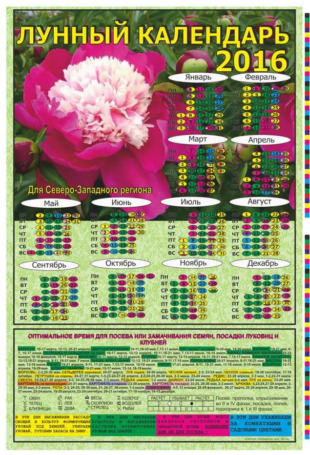 Розы лунный календарь